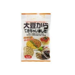 フジサワ 大豆からできちゃいました ミンチタイプ 110g×10袋 現代人の食事にかかせないお肉の代わりに、良質の大豆を!|profit