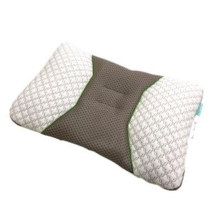 京都西川 ハイバランスピロー(緑茶練りこみパイプ使用枕) ベージュ 06-PL8550(L) profit
