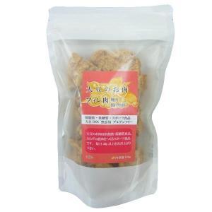 大豆のお肉 ソイミート フィレ 100g×10袋セット 大豆100%!!グルテンフリーで、タンパク質&食物繊維もたっぷり!|profit