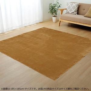 ラグ カーペット (ホットカーペット対応) 『イーズ』 ベージュ 約185×240cm 3畳 3963429 使いやすさにこだわったラグ。|profit