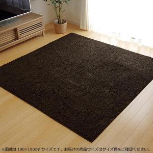 ラグ カーペット (ホットカーペット対応)  『シャンゼリゼ』 ブラウン 約95×140cm  1畳 4722219 1枚敷くだけで洗練された空間に。|profit