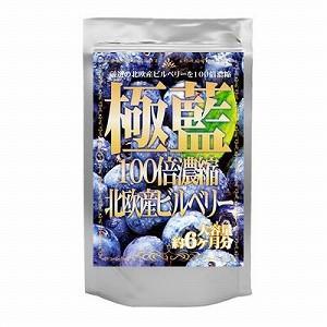 ブルーベリー ビルベリー ルテイン 極藍100倍濃縮北欧産ビルベリー 大容量約6ヵ月分/サプリメント サプリ|profit