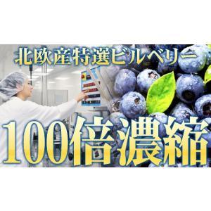 ブルーベリー ビルベリー ルテイン 極藍100倍濃縮北欧産ビルベリー 大容量約6ヵ月分/サプリメント サプリ|profit|02