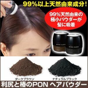 ヘアパウダー 増毛 増毛剤 利尻と椿のPONヘアパウダー|profit