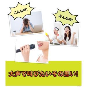 メガホン ストレス解消 応援グッズ SAKEBOARD -サケボード-|profit|04