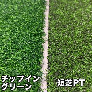 大型サイズご検討用:人工芝5種サンプル生地|progolf