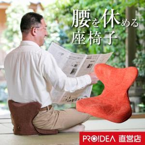 姿勢 椅子 座椅子 腰痛 クッション 骨盤 馬具マットプレミアムEX|proidea