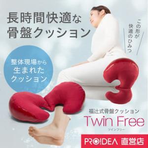 腰痛 クッション 座布団 コンパクト骨盤 座骨 長時間座ってもお尻や腰が痛くならない ツインフリー プロイデア ドリーム|proidea