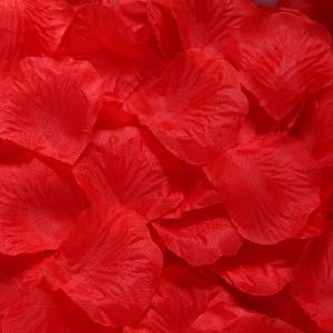 花びら単色100枚(レッド)|prokizai