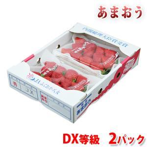 福岡県産いちご あまおう DX平詰め 270g×2パック|promart-jp