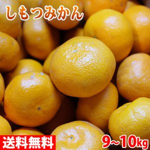 【送料無料】和歌山県産 下津みかん(しもつみかん)秀品 Sサイズ 10kg|promart-jp