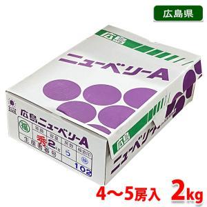 広島県産ぶどう ニューベリーA 秀品 4〜5房入 2kg箱|promart-jp