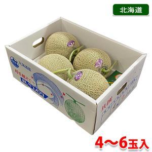 北海道産 赤肉メロン ようていメロン 8kg箱(5玉/6玉)|promart-jp