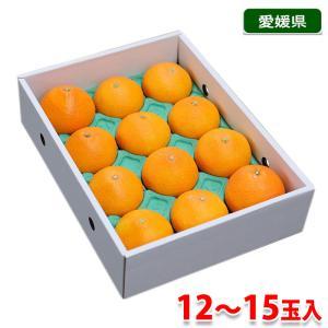 愛媛県産 紅まどんな 2.5kg|promart-jp