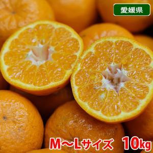 愛媛県産 ポンカン 秀品 M〜Lサイズ 10kg|promart-jp