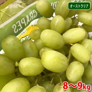 送料無料 オーストラリア産 種無しぶどう トンプソン(シードレス)9kg promart-jp