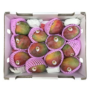 【送料無料】メキシカンマンゴー(アップルマンゴー)KENT種 12玉入り/箱|promart-jp|06