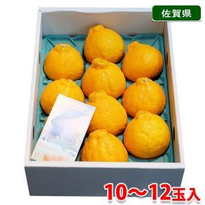 佐賀県産 デコポン 秀品 12玉入り(化粧箱)|promart-jp