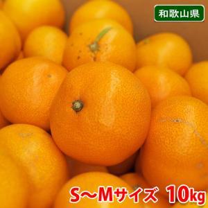 和歌山県 有田みかん 南広(なんぴろ)みかん Sサイズ 10kg|promart-jp
