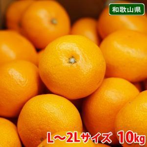 和歌山県 有田みかん 南広(なんぴろ)みかん Mサイズ 10kg|promart-jp