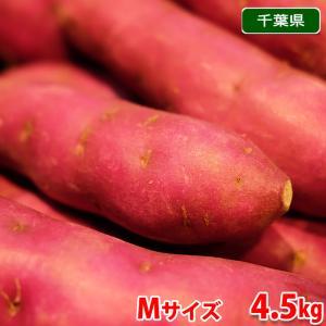 千葉県産 パープルスイートロード Mサイズ(20本前後入)5kg|promart-jp