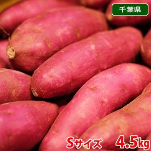 千葉県産 パープルスイートロード Sサイズ(28本前後入)5kg|promart-jp
