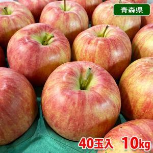 【送料無料】青森県産 りんご ジョナゴールド 40玉サイズ 10kg(CA貯蔵)|promart-jp