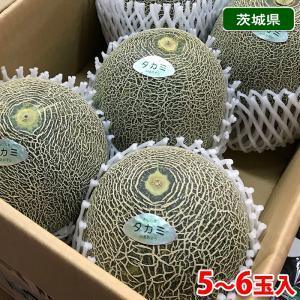 【送料無料】茨城県産 タカミメロン(貴美メロン)4〜6玉入り 1箱 promart-jp