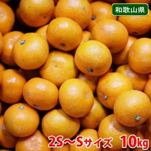 送料無料 和歌山県産 田村みかん S、M、Lサイズ 10kg箱|promart-jp