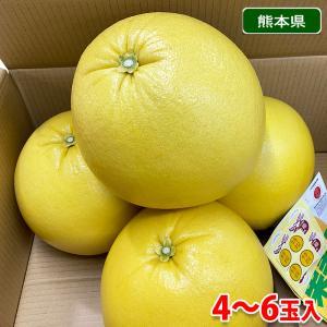 熊本県産 ハウス晩白柚(ばんぺいゆ) 10kg|promart-jp