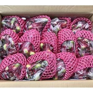 【送料無料】ベトナム産 ドラゴンフルーツ 赤肉種 13玉〜16玉入り(1箱)|promart-jp|02