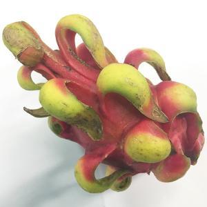 【送料無料】ベトナム産 ドラゴンフルーツ 赤肉種 13玉〜16玉入り(1箱)|promart-jp|03