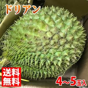 送料無料 ベトナム産 ドリアン 4〜5玉入り(箱)