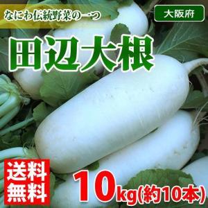 大阪府産 田辺大根 秀品・Mサイズ 約10本入 10kg|promart-jp