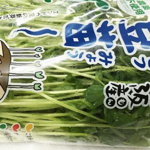 大阪府産 豆苗(とうみょう) 約300gパック×10個入り/箱|promart-jp|05
