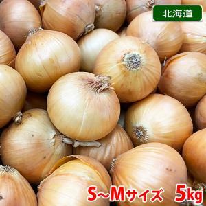 【送料無料】北海道産 ペコロス 秀品・S〜Mサイズ 5kg|promart-jp