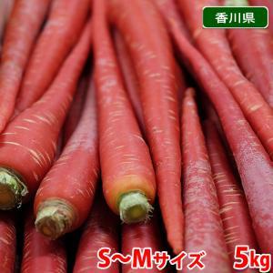 香川県産 金時人参 秀品・Mサイズ 5kg|promart-jp