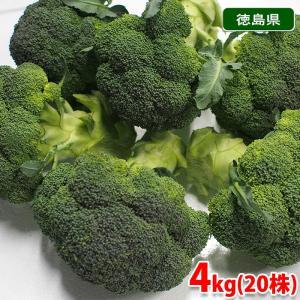 徳島県産 ブロッコリー 秀品 Lサイズ 20株入り 約4kg