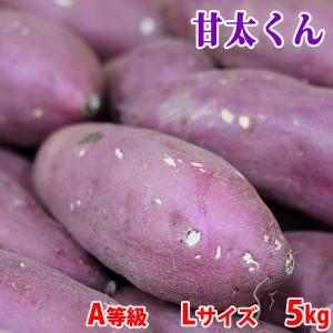 大分県産 さつまいも 甘太くん 秀品 Lサイズ(24〜15本入り)約5kg|promart-jp