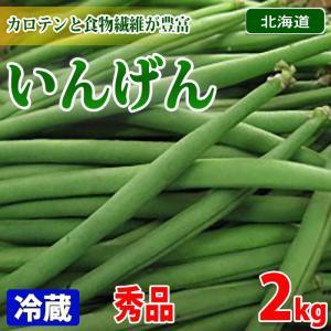 北海道産 いんげん 2kg(1箱)
