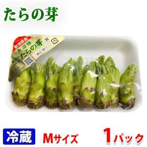 新潟県産 タラの芽 Mサイズ 50g