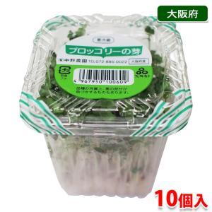 大阪府産 ブロッコリーの芽 10パック入り箱