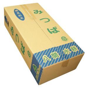 愛知県産 みつば Lサイズ 20袋入り(1箱)|promart-jp|05