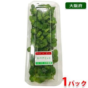 大阪府産 スペアミント 食用ハーブ 1パック|promart-jp