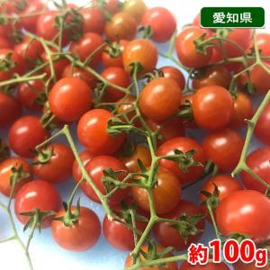 愛知県産 マイクロトマト 1パック(約100g)|promart-jp