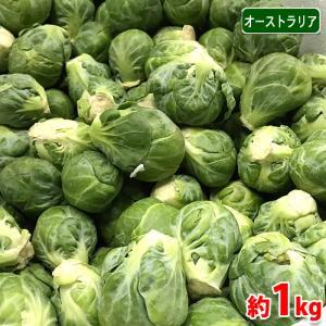 【送料無料】オーストラリア産 芽キャベツ 1kg(バラ詰め)/袋|promart-jp
