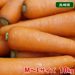 【送料無料】長崎県産 春にんじん 秀品・M〜Lサイズ 10kg(1箱)