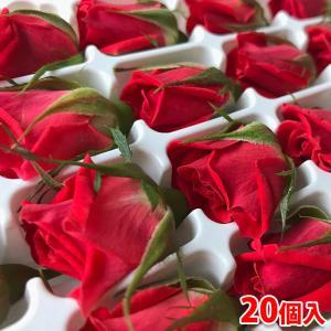 直径1.5cm〜2cmほどの小さな食用花の一つ、食用ミニバラです。  愛知県・豊橋で栽培されている食...