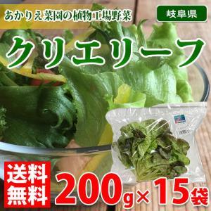 【送料無料】クリエリーフ 200g袋×15袋(1箱)|promart-jp