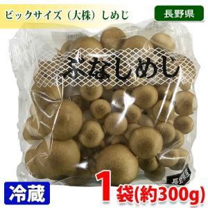 長野県産 ぶなしめじ(大株) 約320〜350gパック|promart-jp